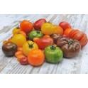 tomates en variétés mélangées 1kg